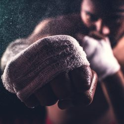 selective-focus-of-a-boxer-s-fist-3562117